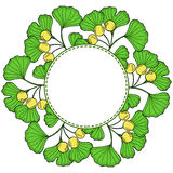 Ginkgo, Round frame 1 Royalty Free Stock Photography