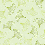 Ginkgo seamless pattern. Royalty Free Stock Photos