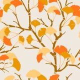 Ginkgo van de herfst Royalty-vrije Stock Foto's