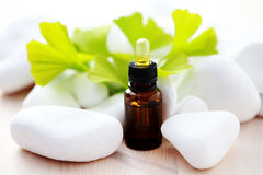 Ginko essential oil Stock Photo