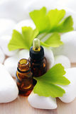 Ginko essential oil. Bottle of ginko essential oil with fresh leaves - beauty treatment Royalty Free Stock Images