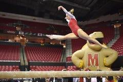 2015 ginnastica del NCAA - Maryland Immagine Stock
