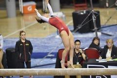 2015 ginnastica del NCAA - Maryland Immagine Stock Libera da Diritti