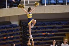2015 ginnastica del NCAA - stato di WVU-Penn Immagine Stock Libera da Diritti