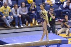 2015 ginnastica del NCAA - stato di WVU-Penn Immagini Stock Libere da Diritti