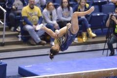 2015 ginnastica del NCAA - stato di WVU-Penn Fotografie Stock Libere da Diritti