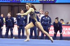 2015 ginnastica del NCAA - stato di WVU-Penn Immagine Stock
