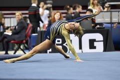 2015 ginnastica delle signore del NCAA - WVU Immagini Stock