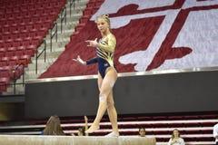 2015 ginnastica delle signore del NCAA - WVU Fotografie Stock