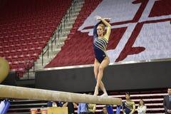 2015 ginnastica delle signore del NCAA - WVU Immagine Stock Libera da Diritti