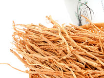 ginseng Royalty-vrije Stock Afbeelding