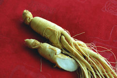 Free Ginseng Stock Photos - 6411683