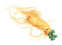 ginseng Foto de archivo libre de regalías