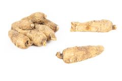 Ginseng américain Photo stock