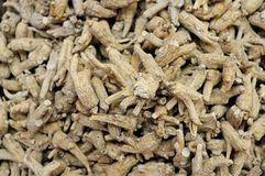 Ginseng background Royalty Free Stock Photo