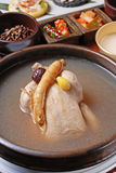 Ginseng chicken soup royalty free stock photo