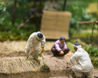 Ginseng Farmer Figurine Royalty Free Stock Images