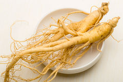 Ginseng. Fresh Ginseng root stick on the white Royalty Free Stock Photography