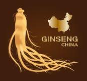 Ginseng ginseng av porslinet, forntida traditionell medicin vektor illustrationer