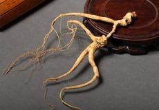 Ginseng korzeń Fotografia Royalty Free