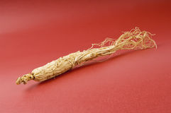 Ginseng on red Stock Photos