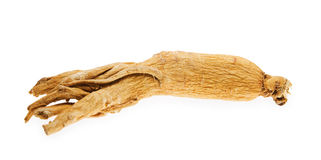 Ginseng root. One ginseng root on white background Stock Photos