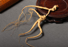 Ginseng root Royalty Free Stock Photography