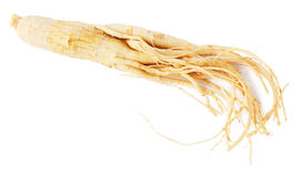 Ginseng root isolated on white background Royalty Free Stock Images