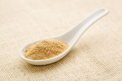 Ginseng root powder Stock Photography