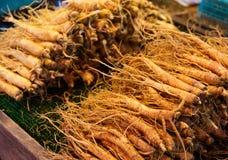 Ginseng root stick Royalty Free Stock Photo