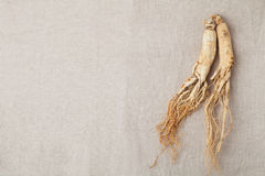 Ginseng roots. Dry ginseng roots on the burlap Royalty Free Stock Photography