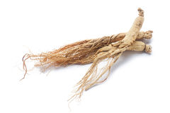 Ginseng roots. Dry ginseng roots on white background Stock Photo