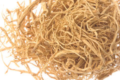 Ginseng Roots Macro Isolated Stock Image