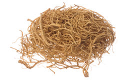 Ginseng Roots Macro Isolated Royalty Free Stock Photos