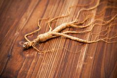 Dry ginseng on wood background Stock Image