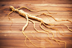 Ginseng on a wood background Stock Photos