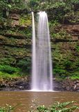 Ginsengvattenfall i den Maliau handfatet Royaltyfri Foto