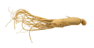 Ginseng stockfotos