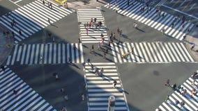 Ginza Überfahrt stock footage