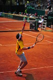 Giobanni Lapentti serving - Davis Cup playoffs Stock Photo