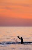 Giocando nel golfo Fotografia Stock