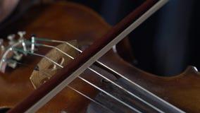 Giocando su una diteggiatura marrone della ragazza del violino le corde Fine in su Priorità bassa nera stock footage