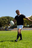 Giocatore che dà dei calci alla palla di rugby sul campo erboso Fotografia Stock Libera da Diritti
