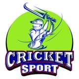 Giocatore del cricket che gioca con il pipistrello Immagini Stock Libere da Diritti
