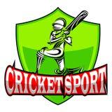 Giocatore del cricket che gioca con il pipistrello Immagine Stock Libera da Diritti