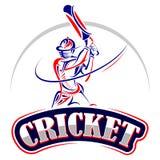 Giocatore del cricket che gioca con il pipistrello Fotografie Stock Libere da Diritti