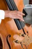 Giocatore del violino basso fotografie stock
