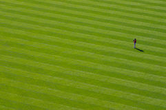 Giocatore dell'area outfield solo Fotografie Stock