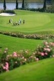 Giocatore di golf che competeing Fotografie Stock Libere da Diritti