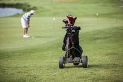 Giocatore di golf maturo dell'uomo con il cappello che picchietta su un verde immagine stock libera da diritti
